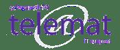 Telemat Logo