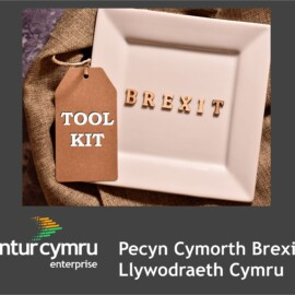 Welsh Government Brexit Toolkit